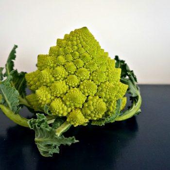 見た目インパクト大!イタリアの野菜ロマネスコ