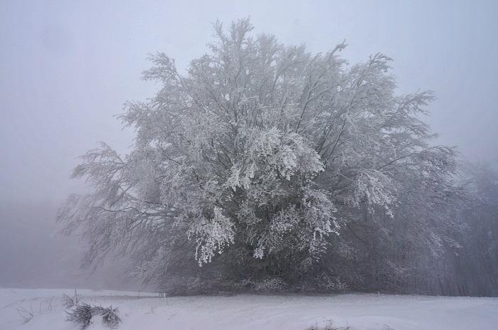 winter-tuscany13-700px