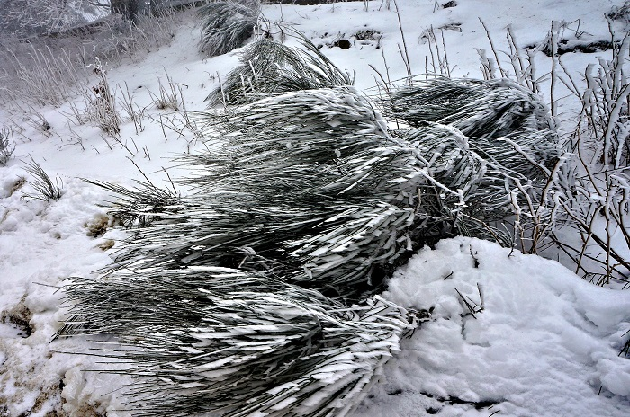 winter-tuscany17-700px