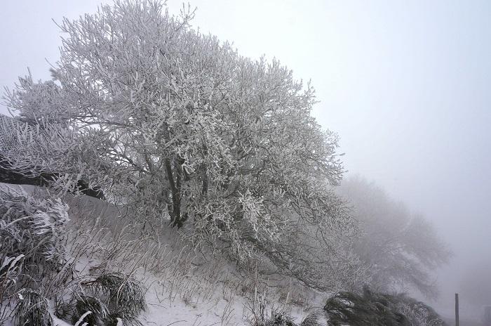 winter-tuscany18-700px