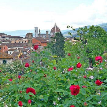 5月お勧めのフィレンツェ観光スポット(1)ローズ・ガーデン