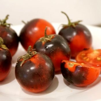 焦げた?!真っ黒なイタリアのトマト、SUN BLACK(サン・ブラック)