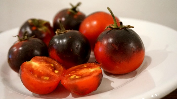 sun-black-pomodoro3