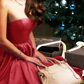 クリスマスバッグイメージ